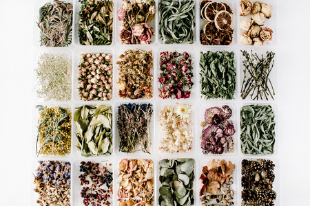 Various of dried tea flowers, leaves and petals in boxes on white. flat lay, top view Stok Fotoğraf