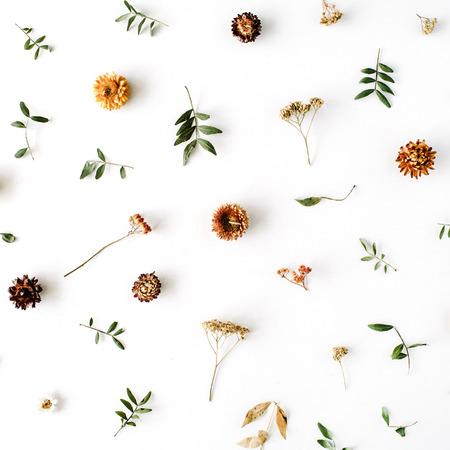 hojas secas: amarilla seca flores, ramas, hojas y pétalos patrón aislado en el fondo blanco. aplanada, vista aérea