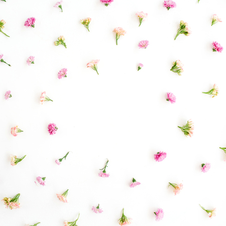Frame with pink and beige wildflower buds, green leaves, branches on white background. Flat lay, top view. Valentines background Stok Fotoğraf
