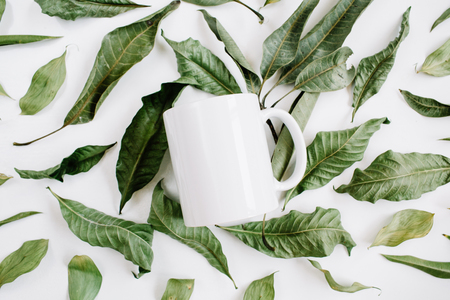 Blank template of white mug and green leaves on white background. Flat lay, top view. Zdjęcie Seryjne
