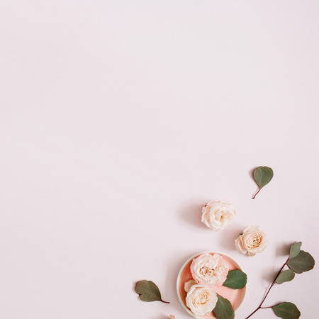 Beige roses and eucalyptus branches on pale pastel pink background. Flat lay, top view. Floral texture background. Stock Photo