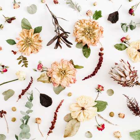 Dried flowers texture: beige peony, protea, eucalyptus branches, roses on white background. Flat lay, top view. Floral background