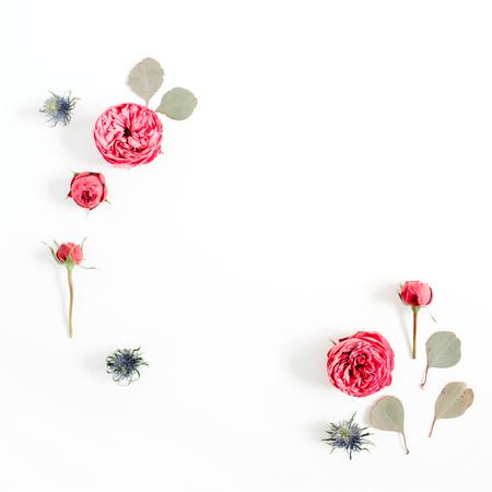 빨간 장미 꽃 봉오리, 유칼립투스 분기 흰색 배경에 고립의 만든 프레임. 평면 누워, 상위 뷰입니다. 꽃 배경 개념입니다.