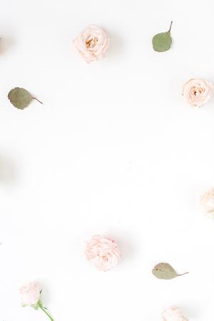 꽃 프레임 베이지 색 장미, 유칼립투스 잎 및 흰색 배경에 흰색 카네이션했다. 평면 누워, 상위 뷰입니다. 꽃 질감 배경입니다.
