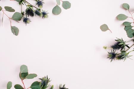 De mooie eucalyptustakken en het eringium bloeien grenskader op bleke pastelkleur roze achtergrond. Plat leggen, bovenaanzicht. Levensstijl samenstelling.