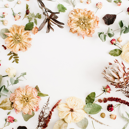 Round frame wreath made of dried flowers: beige peony, protea, eucalyptus branches, roses on white background. Flat lay, top view. Floral background