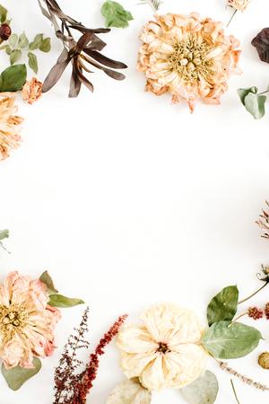 flores secas: Guirnalda de marco redondo con flores secas: peonía beige, protea, ramas de eucalipto, rosas sobre fondo blanco. Piso plano, vista superior. Fondo floral
