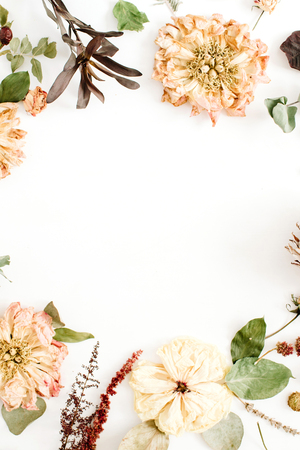 Round frame wreath with dried flowers: beige peony, protea, eucalyptus branches, roses on white background. Flat lay, top view. Floral background