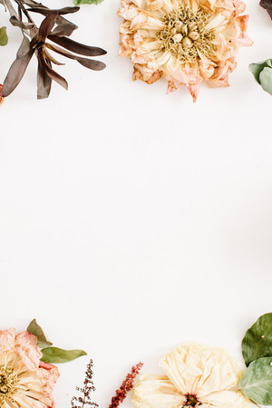 Dried flowers: beige peony, protea, eucalyptus branches, roses on white background. Flat lay, top view. Floral background