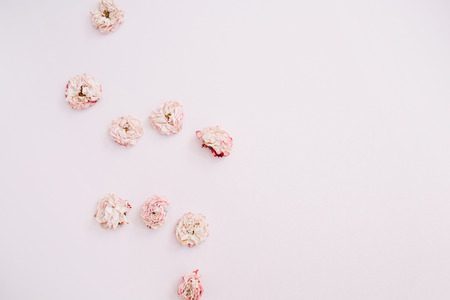 Pink dry roses buds arrangement on pink background. Flat lay, top view. Flowers background. Stock fotó