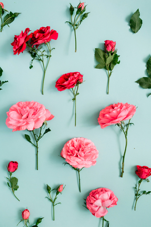 Floral pattern made of pink and red roses, green leaves, branches on blue background. Flat lay, top view. Valentines background. Floral background. Pattern of flowers.