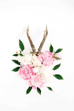 Beautiful pink and white peony flowers bouquet and goat horns on white background. Flat lay, top view modern stylish hipster background. Stock Photo