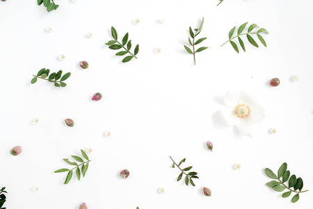 Floral frame with flower buds, green leaves, branches on white background. Flat lay, top view.