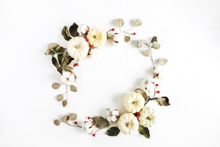 Wreath frame made of white pumpkins, red berries and eucalyptus branches on white background. Flat lay, top view autumn fall composition. Stock Photo