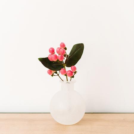 Hypericum flower in vase on white background. Stock Photo