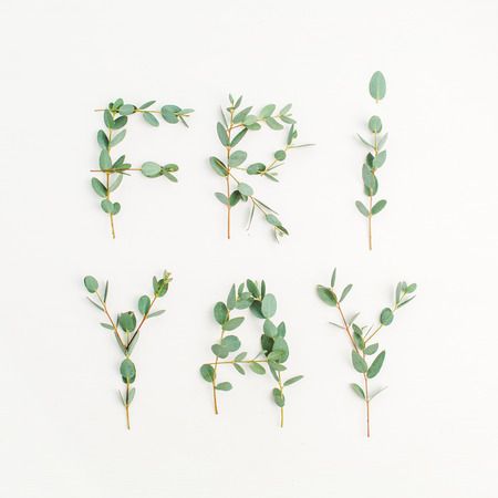 Urban word Friyay. The last day of the work week concept made of eucalyptus branch on white background. Flat lay, top view Friday composition. Stock Photo