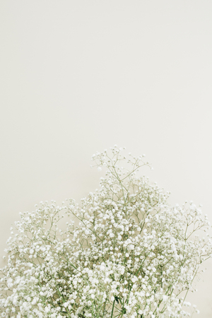 White gypsophila flower bouquet on white background. Minimal holiday concept. Stock Photo