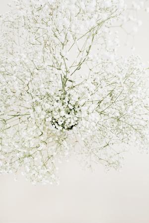 White gypsophila flower bouquet.