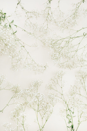 White gypsophila flower bouquet pattern. Flat lay, top view festive background. Stock Photo