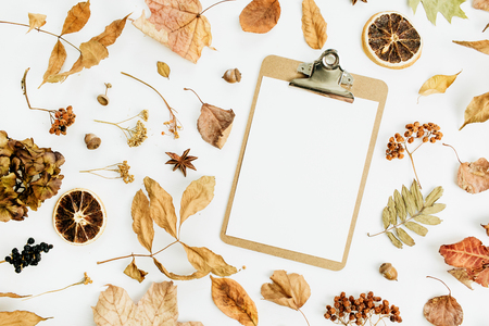 Clipboard with blank paper on dry fall autumn leaves background. Flat lay, top view. Standard-Bild - 107405173
