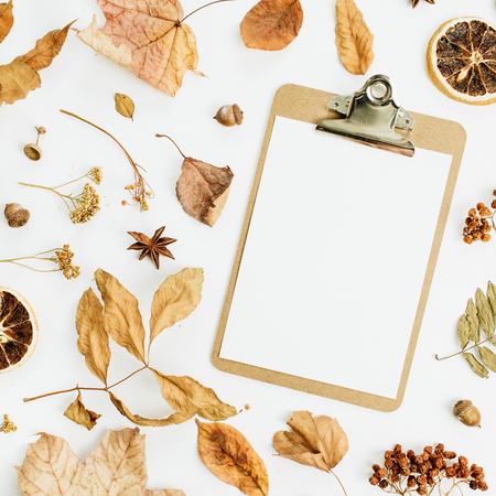 Clipboard with blank paper on dry fall autumn leaves background. Flat lay, top view. Standard-Bild - 107405205