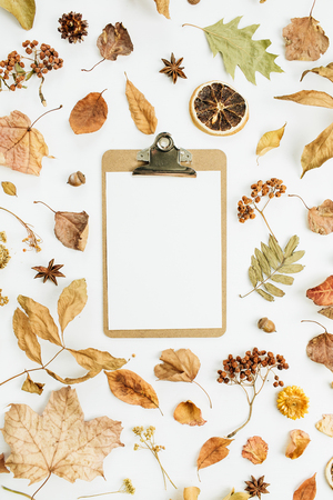 Clipboard with blank paper on dry fall autumn leaves background. Flat lay, top view. Standard-Bild - 108608770