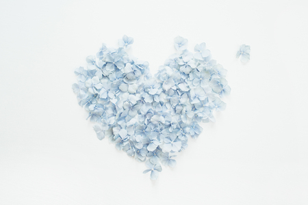 Heart symbol made of hydrangea flower petals. Flat lay, top view Valentines day concept. Stockfoto