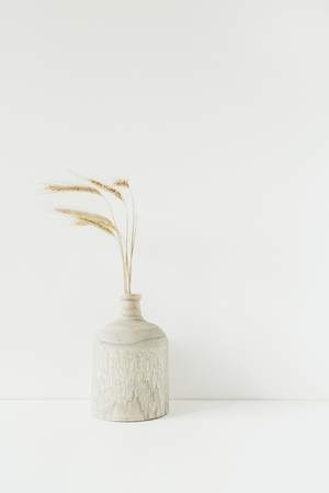 Wheat spikes bouquet in wooden vase on white background. Minimal floral composition.
