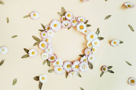 Round wreath frame copy space mock up. Daisy chamomile flower buds background. Flat lay, top view floral summer concept. Standard-Bild - 129781794