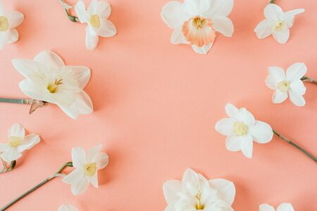 Round wreath frame copy space template. Narcissus flowers on living coral background. Flat lay, top view minimal floral composition. Standard-Bild - 129781810
