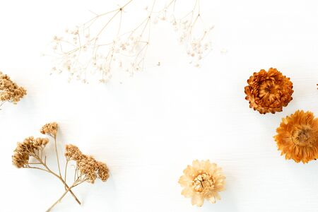 Dry floral branch and buds on white background. Flat lay, top view minimal neutral flower composition. Standard-Bild - 129781956