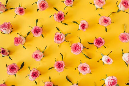 Flat lay pink rose flower buds and leaves pattern on yellow background. Top view floral texture. Zdjęcie Seryjne