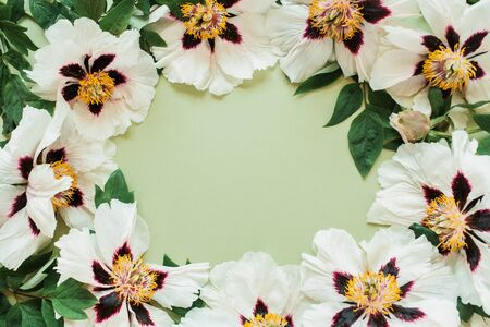 Round frame wreath border of white peonies flowers. Flat lay, top view minimal floral copy space mockup background.