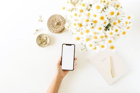 Womens hand hold smartphone with blank screen. Home office desk workspace with chamomile daisy flowers bouquet and notebook on white background. Flat lay, top view mockup copy space.