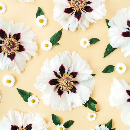 White peonies and chamomile flowers pattern on yellow background. Flat lay, top view minimal floral composition.