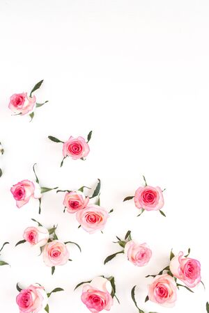 Flat lay pink rose flower buds and leaves pattern on white background. Top view.