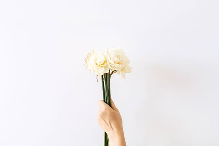 Female hand hold narcissus flowers bouquet on white background. Flat lay, top view minimal floral composition.
