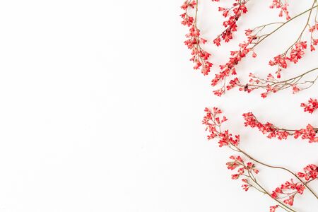 Red wildflowers on white background. Flat lay, top view. Valentines Day.