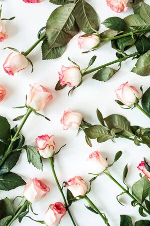 Floral composition with pink rose flowers pattern texture on white background. Flatlay, top view.