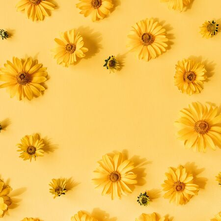 Flat lay frame border with blank copy space mockup made of yellow daisy flowers on yellow background. Top view floral concept.