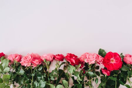 Pink and red roses flowers on pink background. Flat lay, top view minimal floral hero header. Valentines day composition. Zdjęcie Seryjne