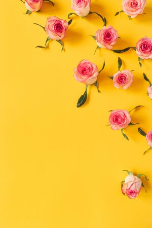 Floral composition with pink rose flower buds on yellow background. Flat lay, top view. Zdjęcie Seryjne