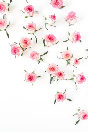 Flat lay pink rose flower buds and leaves pattern on white background. Top view. Reklamní fotografie