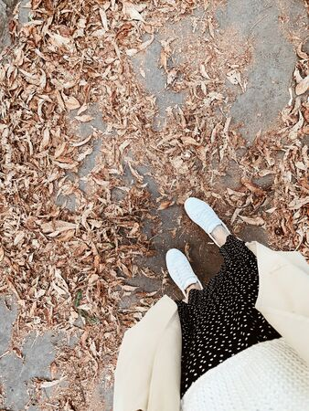 Autumn fall concept. Flat lay, top view. Young girl in white sneakers, black dress and coat standing on the ground with dry leaves. Autumn background, creative composition.