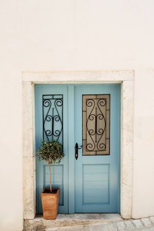 Typical European house. Old blue carving door, white wall, green plant in square terra-cotta pot.