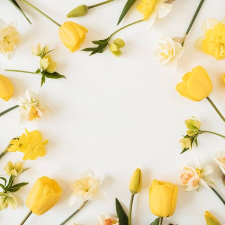 Round frame wreath with blank copy space made of yellow narcissus and tulip flowers on white background. Flat lay, top view floral festive holiday concept 免版税图像