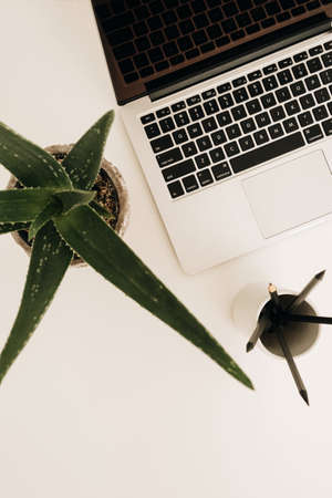 Laptop on white table with aloe plant. Minimal home office desk workspace. Flat lay, top view