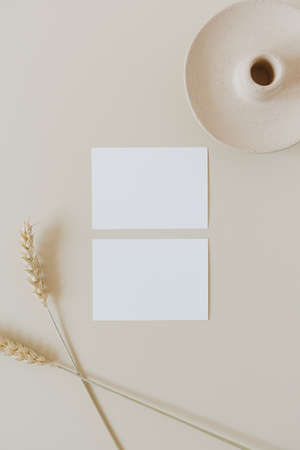 Blank paper sheet cards with mockup copy space and wheat / rye stalks on beige background. Minimal business brand template. Flat lay, top view. 版權商用圖片