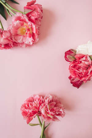 Floral composition with round frame of pink and white peony flowers on pink background. Flat lay, top view mockup copy space template Foto de archivo
