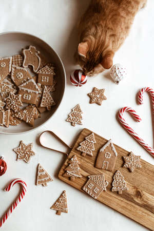 Homemade ginger cookies (stars, fir trees, houses) on wooden cutting board, stick candies and beautiful cute red cat on white background. Flat lay, top view Christmas / New Year composition. Zdjęcie Seryjne